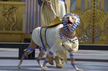 Las mascaritas de La eterna primavera celebran en Vegueta y Santa Catalina dos jornadas de Carnaval de día
